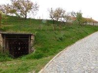 Prodej ostatní nemovitosti v lokalitě Miroslav, okres Znojmo - obrázek č. 3