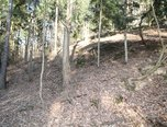Jaroměřice, lesní pozemek, 24 932 m² - pozemek - Pozemky Svitavy