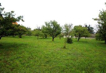 Prodej pozemku v lokalitě Pyšel, okres Třebíč - obrázek č. 1