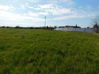 Prodej pozemku v lokalitě Hrušovany nad Jevišovkou, okres Znojmo - obrázek č. 4