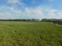 Prodej pozemku v lokalitě Hrušovany nad Jevišovkou, okres Znojmo - obrázek č. 7