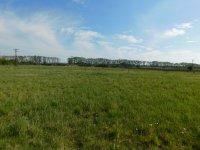 Prodej pozemku v lokalitě Hrušovany nad Jevišovkou, okres Znojmo - obrázek č. 6
