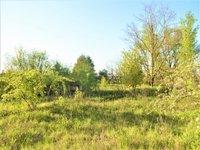 Prodej pozemku v lokalitě Hodonín, okres Hodonín - obrázek č. 6