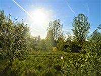 Prodej pozemku v lokalitě Hodonín, okres Hodonín - obrázek č. 2