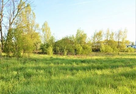 Prodej pozemku v lokalitě Hodonín, okres Hodonín - obrázek č. 1
