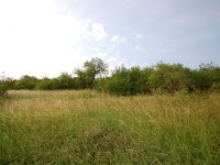 Prodej pozemku v lokalitě Znojmo, okres Znojmo - obrázek č. 7