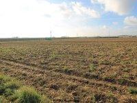 Prodej pozemku v lokalitě Pozořice, okres Brno-venkov - obrázek č. 6