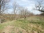 Znojmo, zahrada  743m2, zděná chatka – zahrada - Pozemky Znojmo