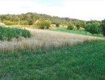 Železné, louka 4628 m2, příjezd, možnost studny - pozemek - Pozemky Brno-venkov