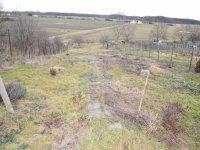 Prodej pozemku v lokalitě Kostice, okres Břeclav - obrázek č. 4