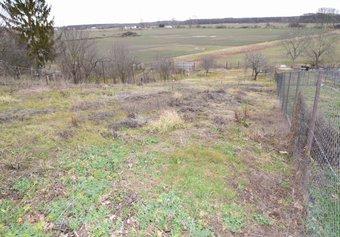 Prodej pozemku v lokalitě Kostice, okres Břeclav - obrázek č. 1