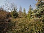 Slavkov u Brna, zahrada, 331 m² – pozemek - Pozemky Vyškov