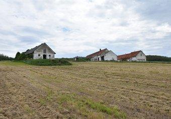 Prodej pozemku v lokalitě Oleksovice, okres Znojmo - obrázek č. 1