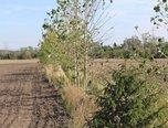 Načeratice, stavební parcela 2.480 m2,  – pozemek - Pozemky Znojmo