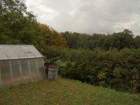 Prodej pozemku v lokalitě Ráječko, okres Blansko - obrázek č. 5