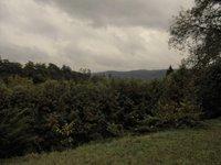 Prodej pozemku v lokalitě Ráječko, okres Blansko - obrázek č. 7