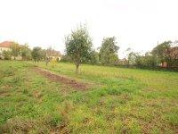 Prodej pozemku v lokalitě Lukov, okres Znojmo - obrázek č. 2