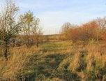 Chrudichromy – stavební pozemek 1023m2, sítě v dosahu - pozemek - Pozemky Blansko