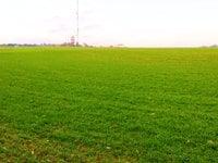 Prodej pozemku v lokalitě Krásensko, okres Vyškov - obrázek č. 4