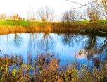 Krásensko, rybník s přilehlými pozemky, 12.045 m2 - rybník - Pozemky Vyškov
