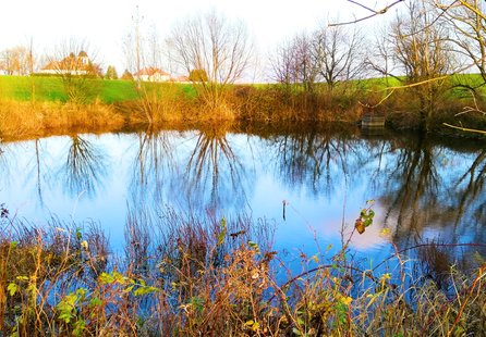 Prodej pozemku v lokalitě Krásensko, okres Vyškov - obrázek č. 1