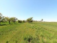 Prodej pozemku v lokalitě Hrotovice, okres Třebíč - obrázek č. 3