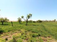 Prodej pozemku v lokalitě Hrotovice, okres Třebíč - obrázek č. 2