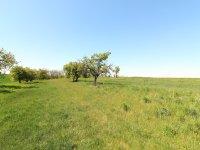 Prodej pozemku v lokalitě Hrotovice, okres Třebíč - obrázek č. 8