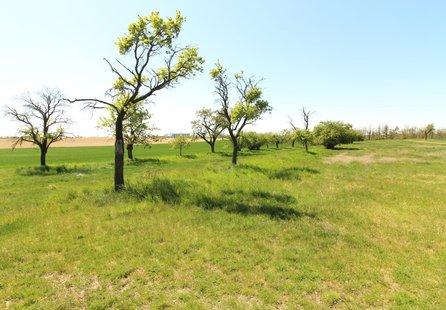 Prodej pozemku v lokalitě Hrotovice, okres Třebíč - obrázek č. 1