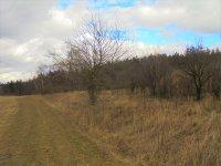 Prodej pozemku v lokalitě Kořenec, okres Blansko - obrázek č. 4