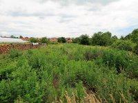 Prodej pozemku v lokalitě Vedrovice, okres Znojmo - obrázek č. 3