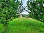 Malhostovice - Nuzířov, zastavitelný pozemek, 1731 m2,  sítě na hranici - pozemek - Pozemky Brno-venkov