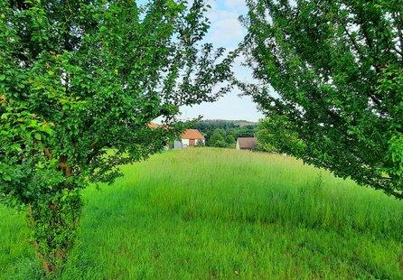 Prodej pozemku v lokalitě Malhostovice, okres Brno-venkov - obrázek č. 1
