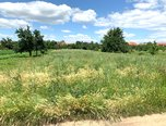Ořechov, zahrada, 1026 m², příjezdová cesta - pozemek - Pozemky Brno-venkov