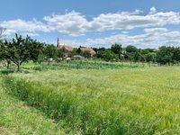 Prodej pozemku v lokalitě Ořechov, okres Brno-venkov - obrázek č. 2