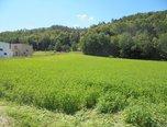 Boskovice - Mladkov, pozemek pro bydlení 2498 m2 , les - pozemek - Pozemky Blansko