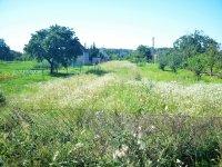 Prodej pozemku v lokalitě Břeclav, okres Břeclav - obrázek č. 3