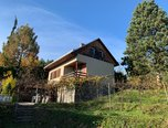 Želešice, chata 3+1, pozemek 2 612 m2, vinný sklep – chata - Domy Brno-venkov
