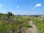 Borkovany, pozemky pro komerční výstavbu, 8261m² - pozemek - Pozemky Břeclav