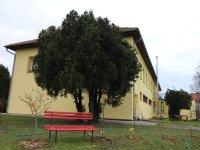 Prodej domu v lokalitě Znojmo, okres Znojmo - obrázek č. 4