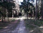 Vítějeves, lesní pozemek, 9 747 m2, rekreace, elektřina, voda – pozemek - Pozemky Svitavy