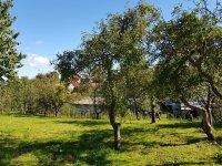 Prodej domu v lokalitě Morašice, okres Svitavy - obrázek č. 4