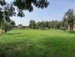 Holasice, soubor pozemků 3.583 m2, IS u hranice pozemku - pozemek - Pozemky Brno-venkov