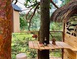 Vyškov, zahrada 1516 m2, domek v korunách stromů, voda – zahrada - Pozemky Vyškov
