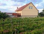 Pavlov, RD atypický, rekonstrukce, zahrada, 527m² - rodinný dům - Domy Břeclav