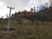 Prodej pozemku v lokalitě Pohledy, okres Svitavy - obrázek č. 5