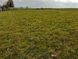 Mikuleč, zastavitelná plocha 1353 m2 - pozemek - Pozemky Svitavy