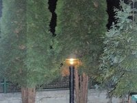 Pronájem bytu v lokalitě Neslovice, okres Brno-venkov - obrázek č. 9