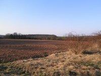 Prodej pozemku v lokalitě Rešice, okres Znojmo - obrázek č. 2
