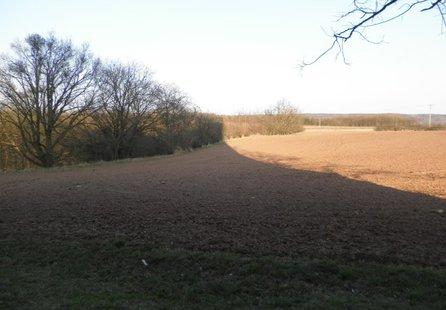 Prodej pozemku v lokalitě Rešice, okres Znojmo - obrázek č. 1